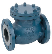 flangeswing-check-valves-32905-6873651